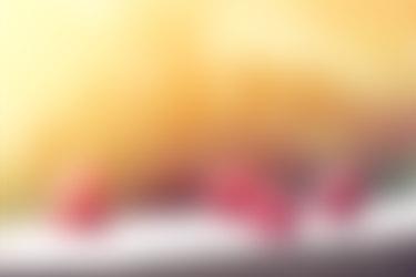 Video Auto Pilote